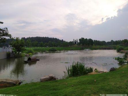 北京潮白河生态补水后 60%的补水量已回补地下
