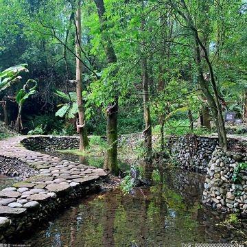 合肥到2025年城市公园将达500个 十八联圩湿地明年基本建成